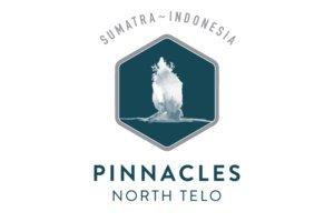 Pinnacles site logo